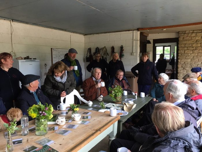 Square Hole Club at Foxdale Equine Assisted Learning